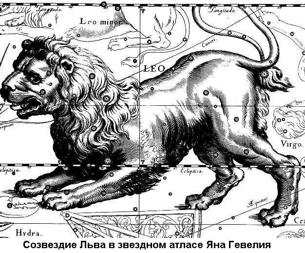 звезды с знаком льва